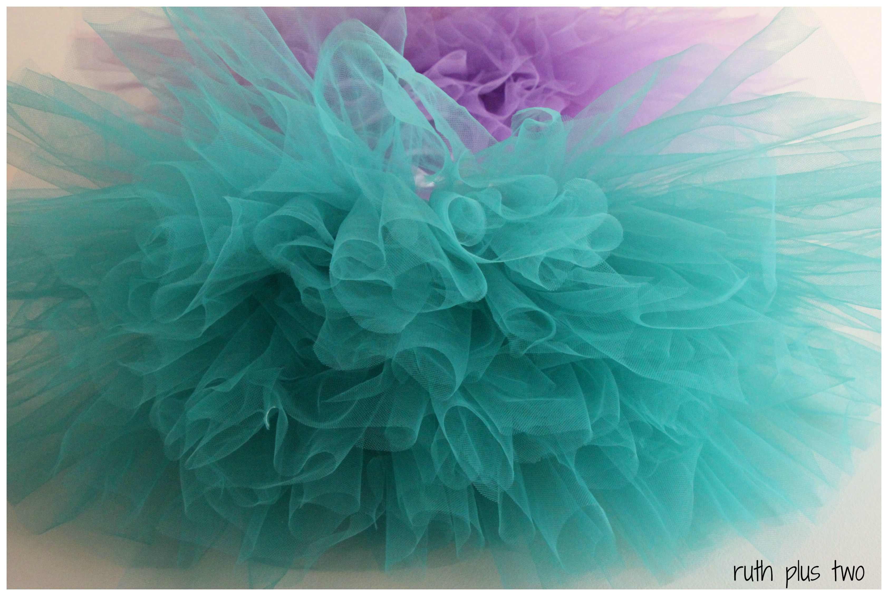Tutu Much Tulle And A Giveaway Ruth Plus Two