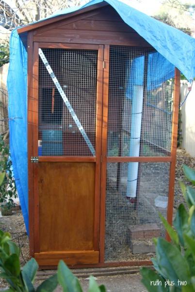 new coop door