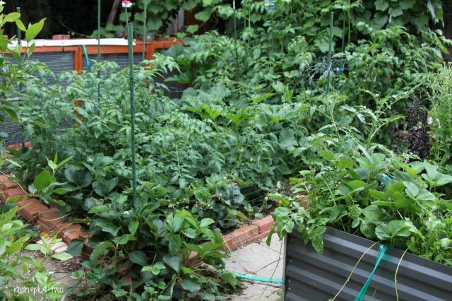 garden overload